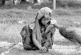 Cambodge Tabac 02